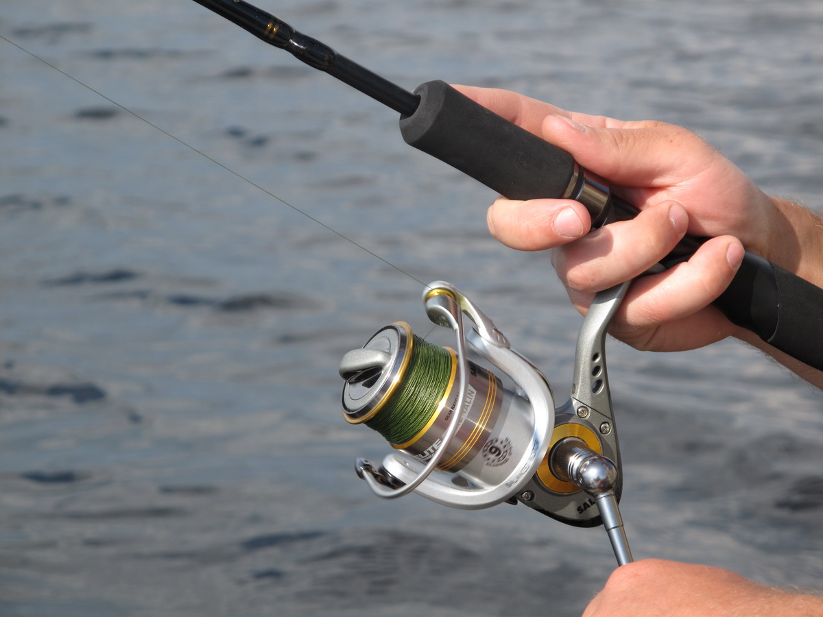 Твичинг в рыбалке: эффективнейшая техника ловли