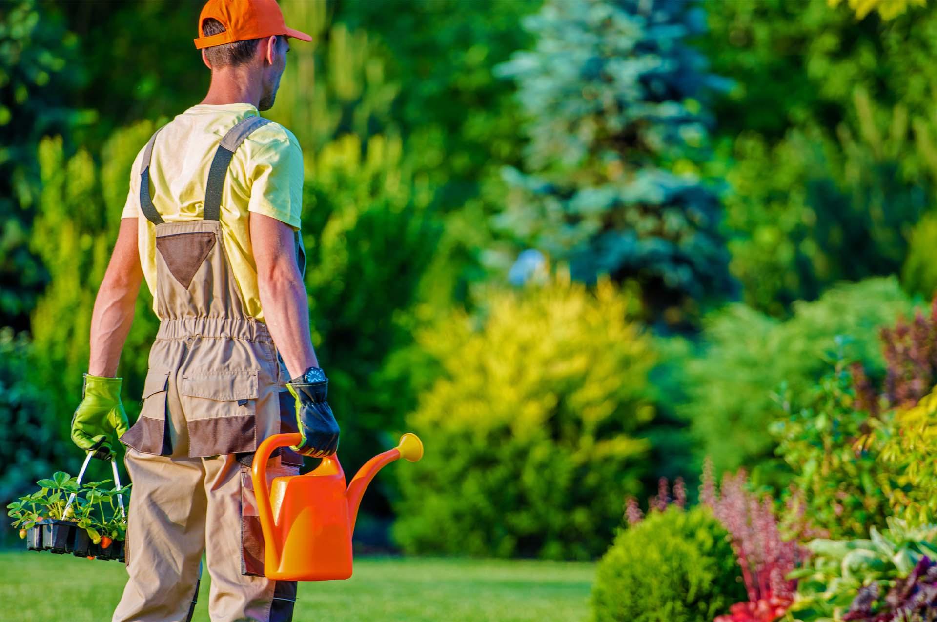 Gardener-and-His-Garden-Job.jpg