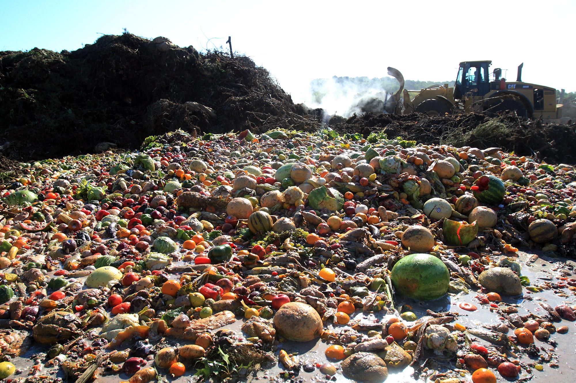 опасность пищевых отходов для окружающей среды