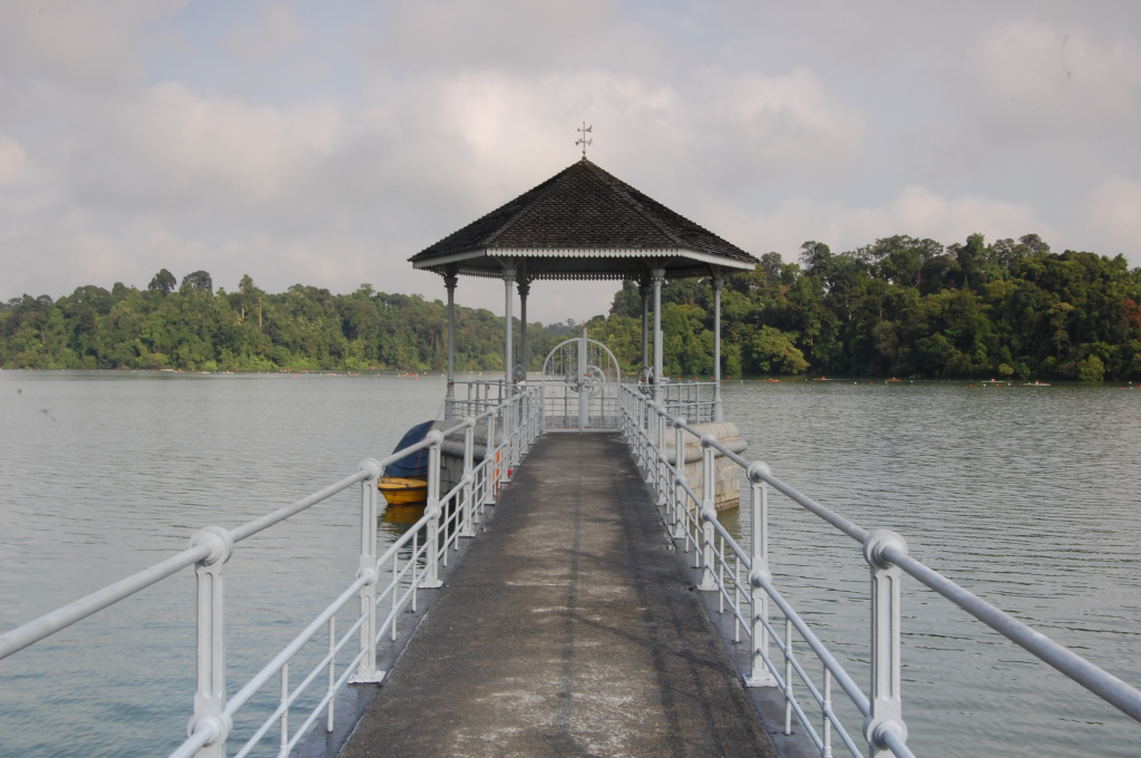macritchie_reservoir_park_5186871419.jpg